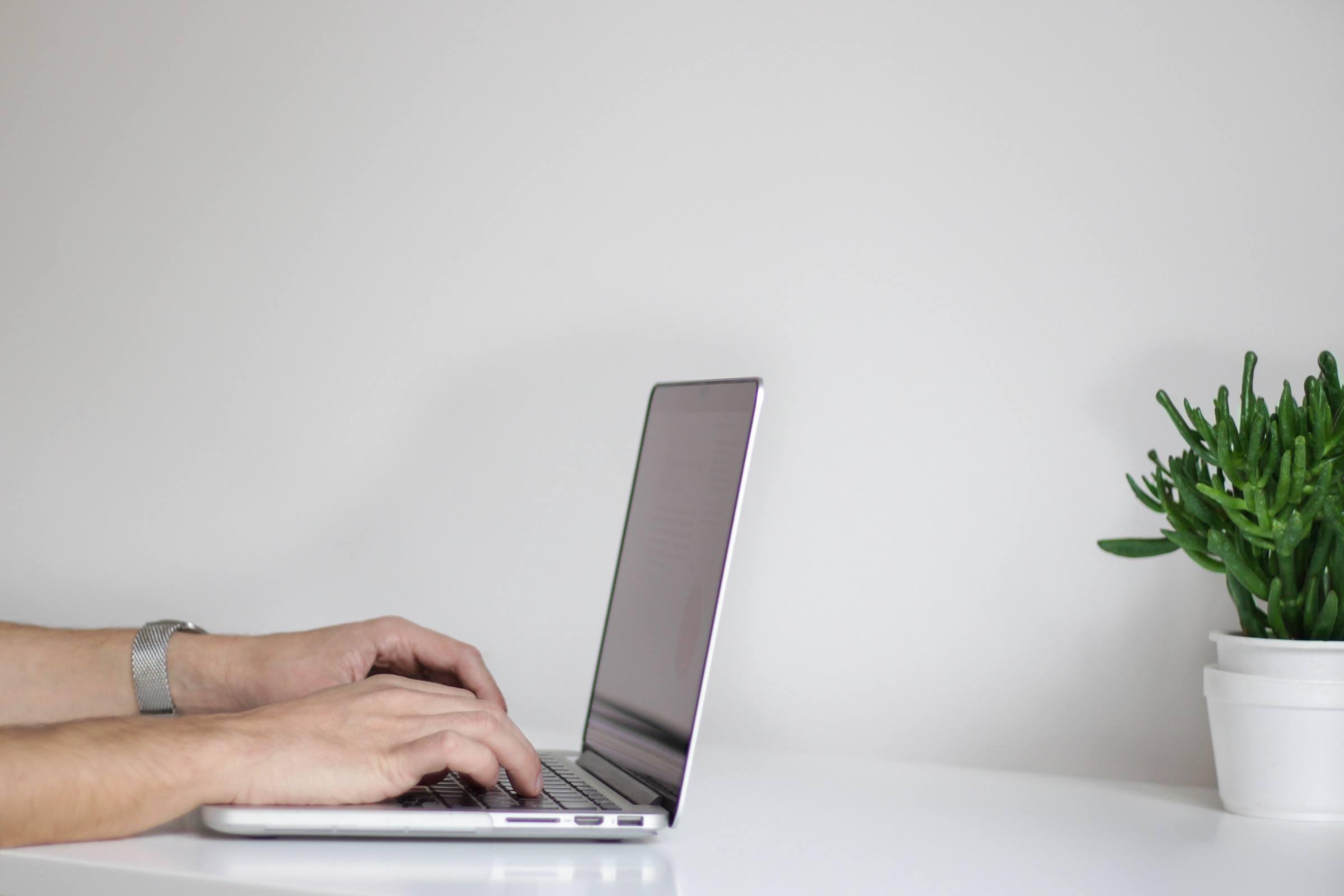 laptop man hands plant