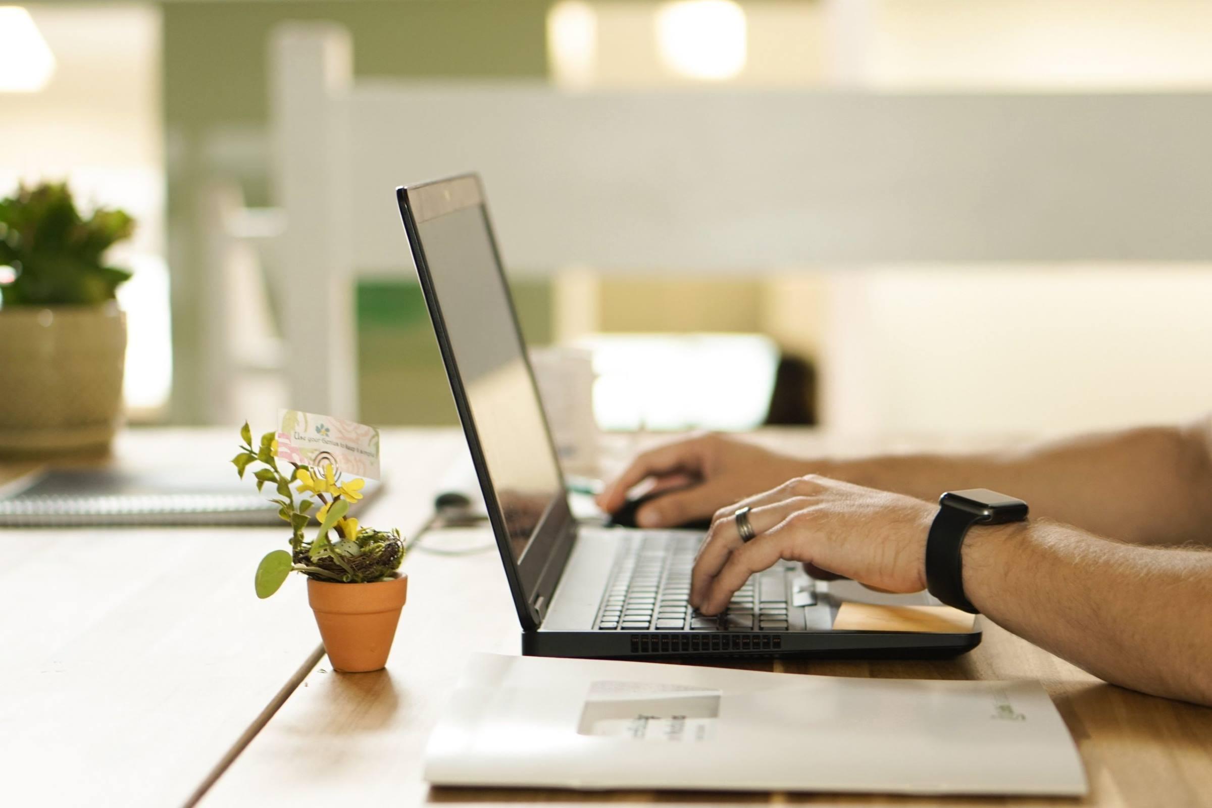laptop man hands plant desk