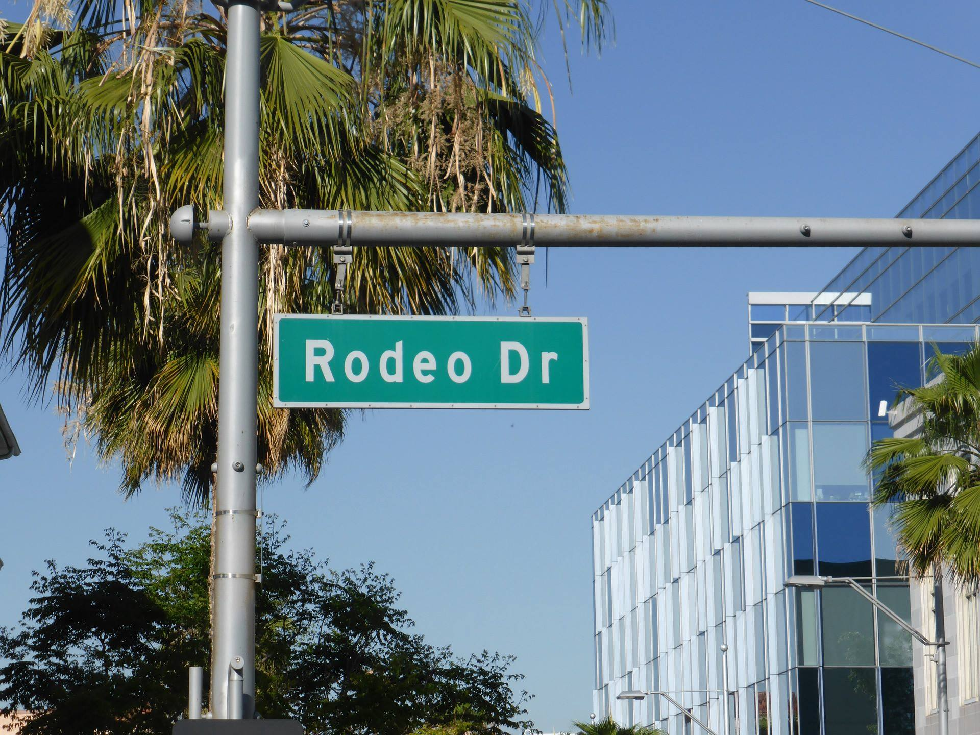 los angeles california rodeo drive palm trees