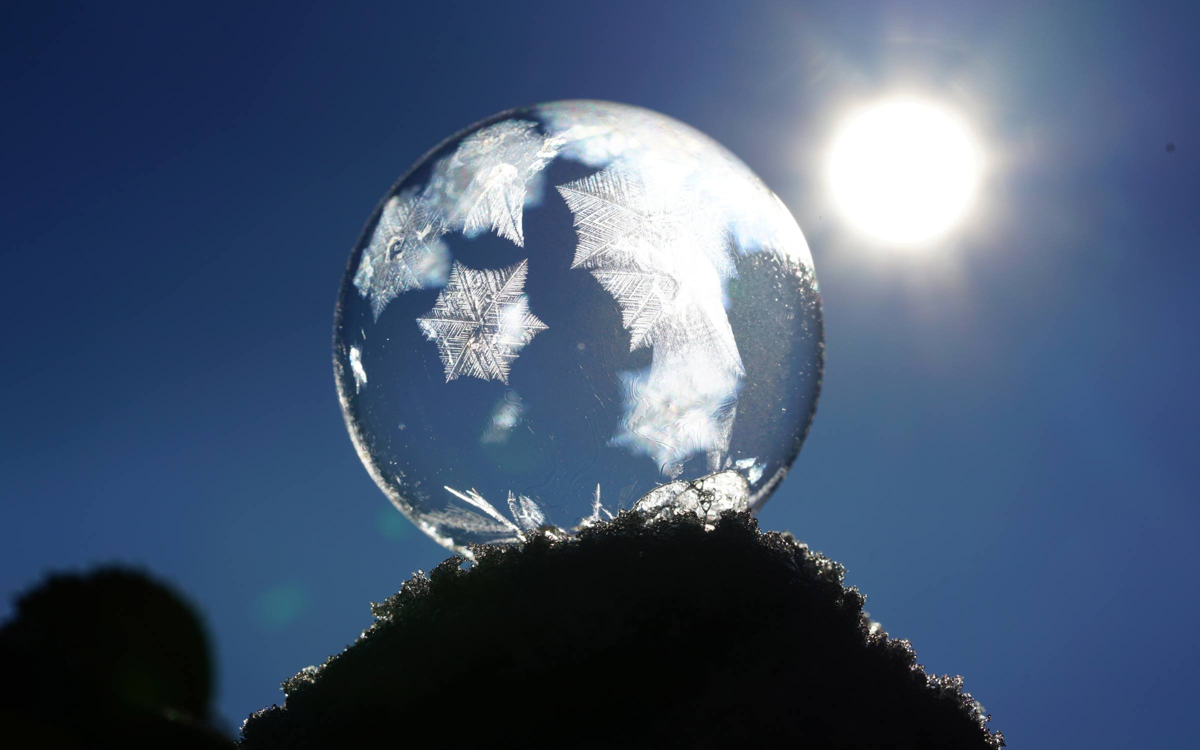 winter frozen bubble ice sun