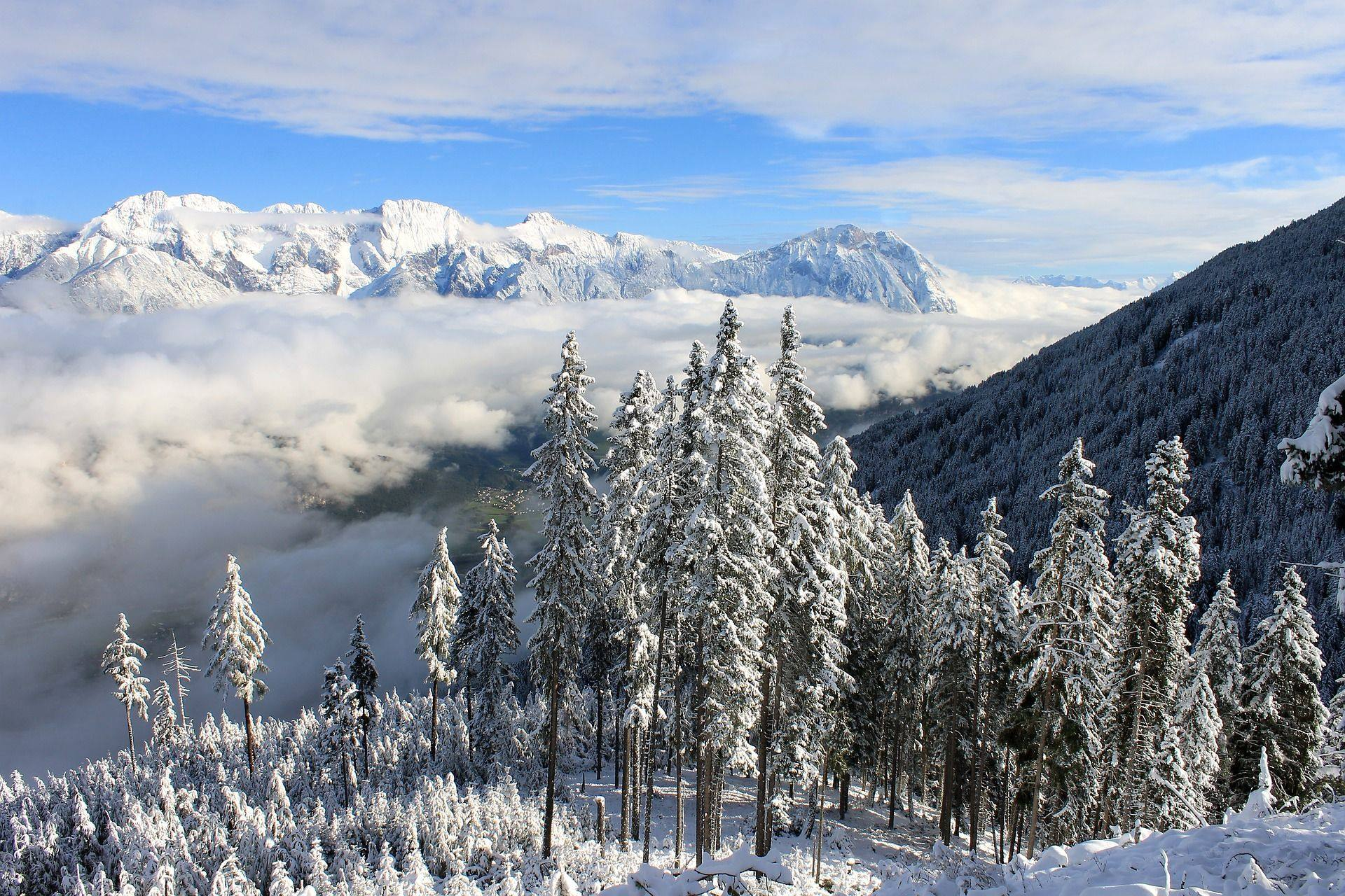 winter landscape mountains snow forest alps