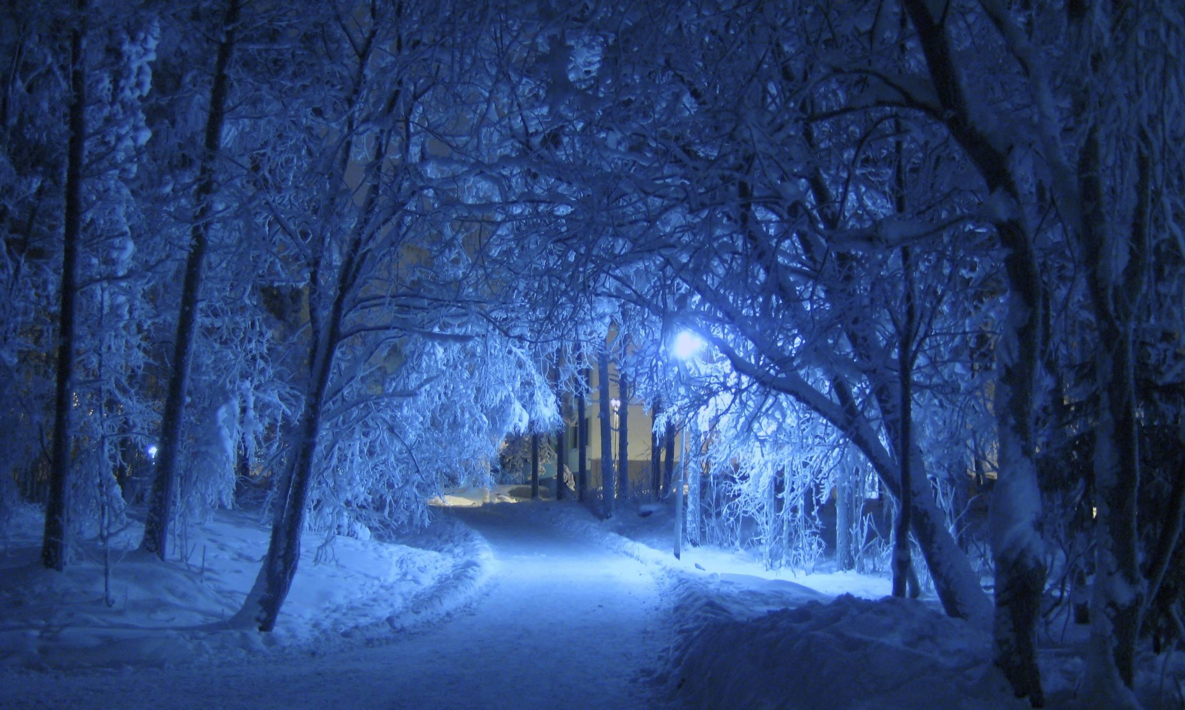 winter snow night trees road