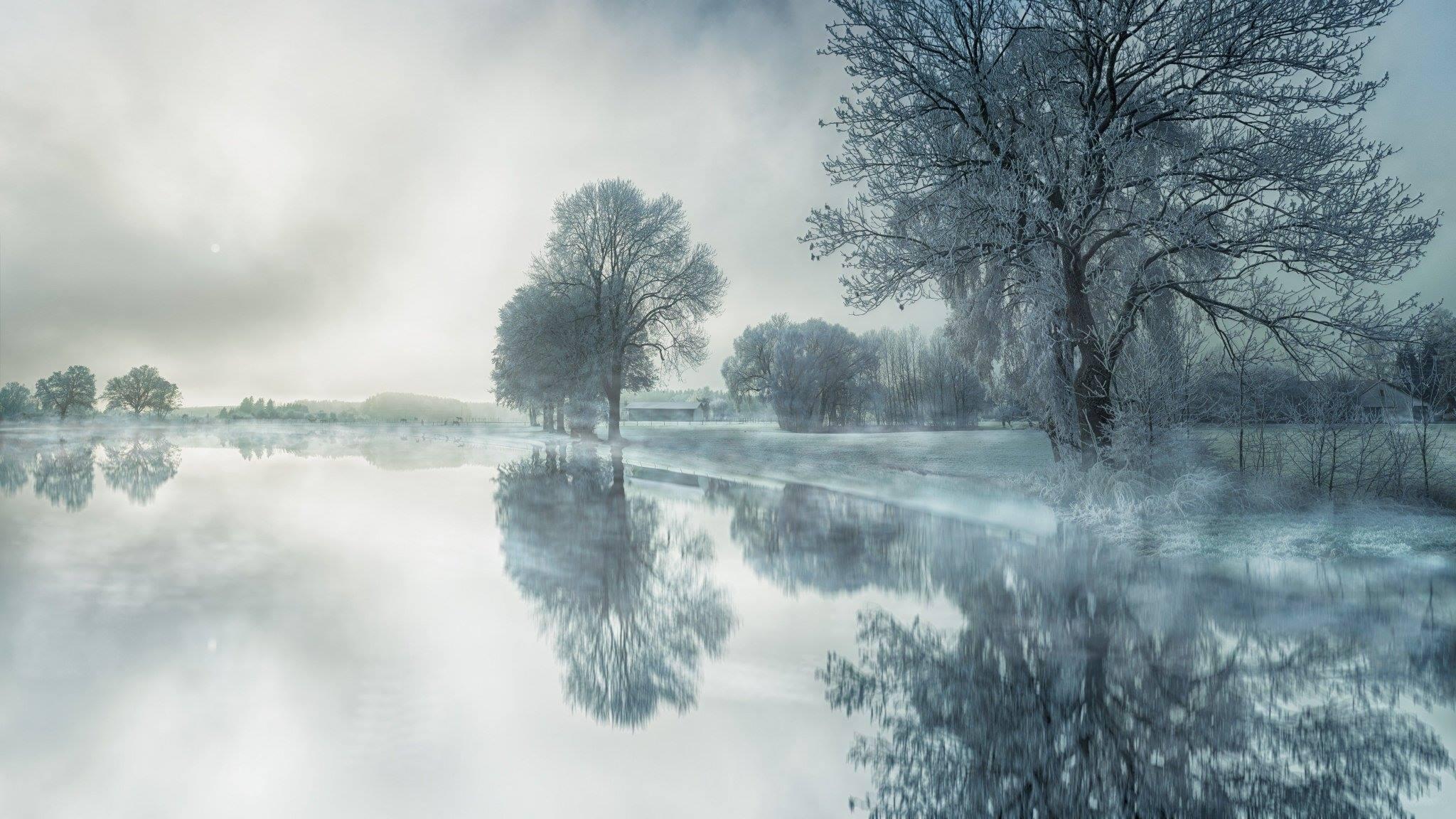 winter trees landscape water reflection