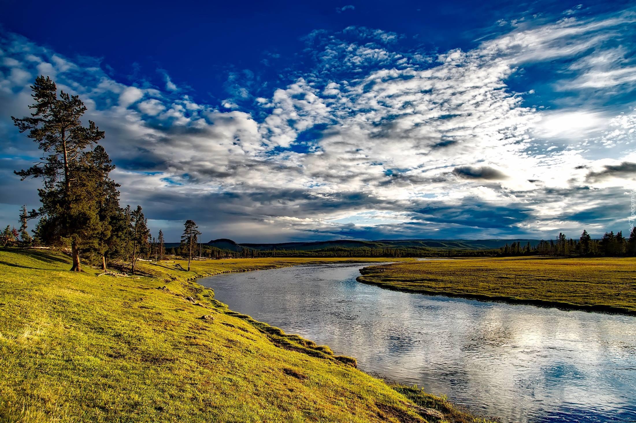 yellowstone national park firehole river plain trees