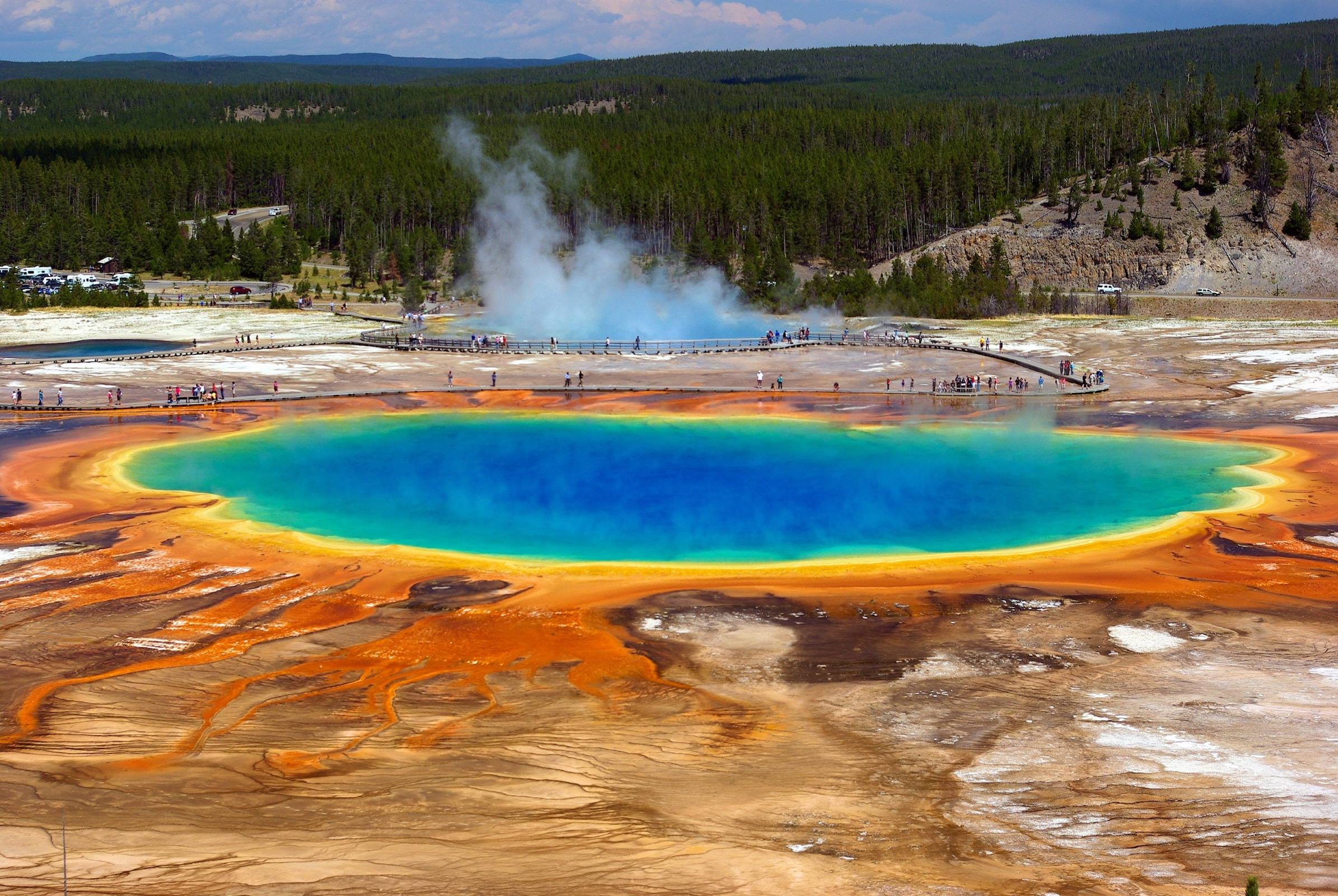 yellowstone national park grand prismatic spring forest landscape