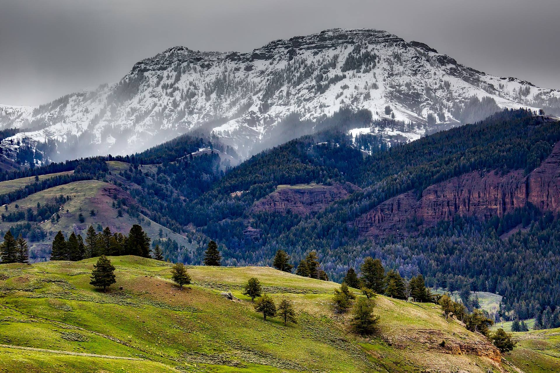 yellowstone national park landscape mountains forest