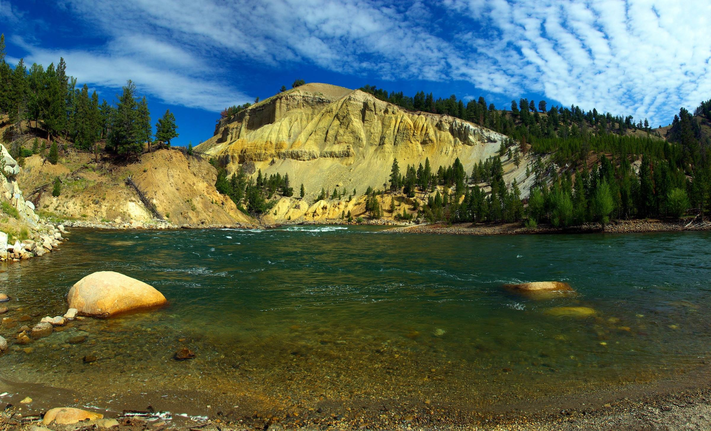 yellowstone national park river landscape trees