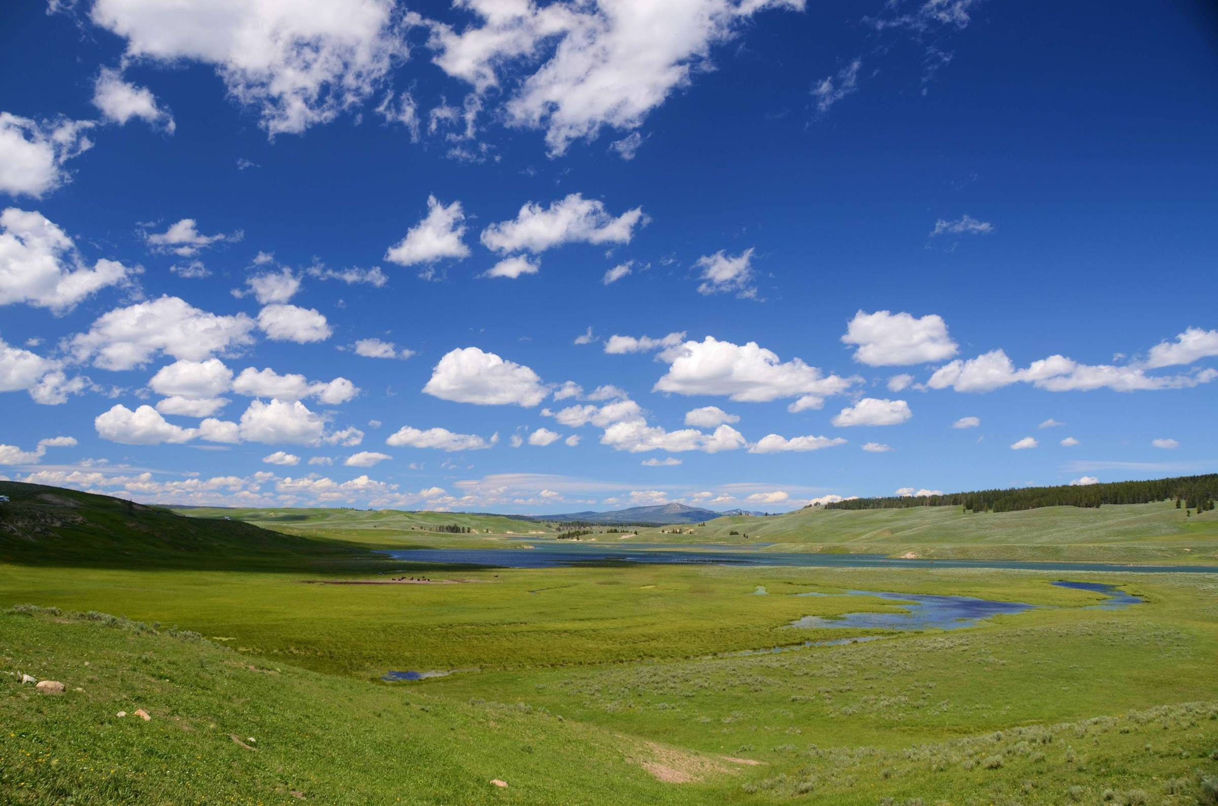 yellowstone national park water meadow landscape clouds