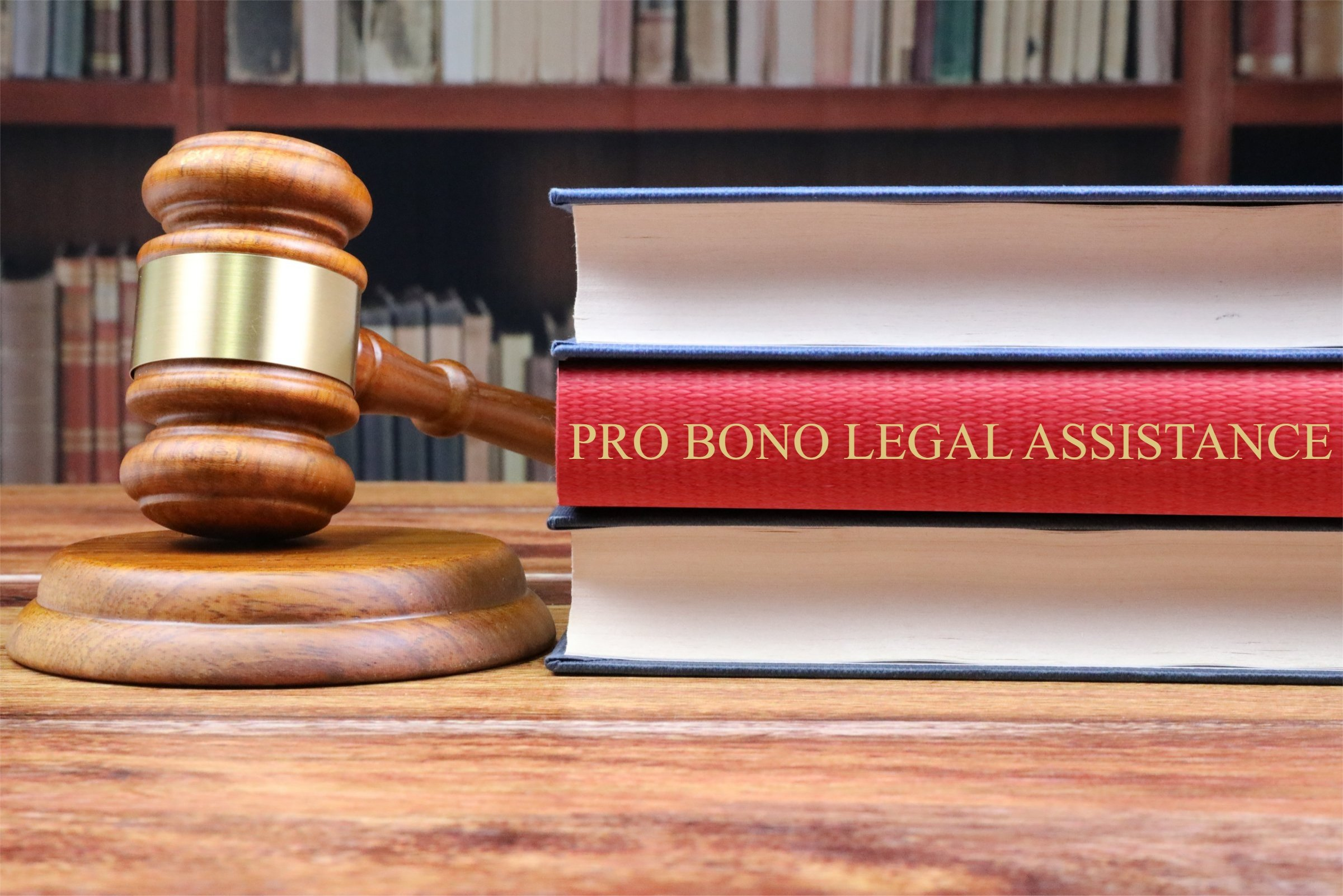 Pro Bono Legal Assistance