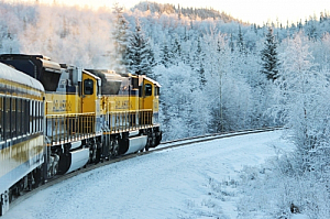 Train travelling through a forest in Alaska