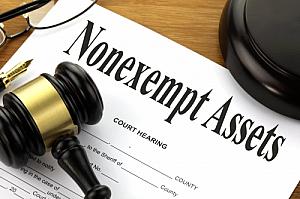 nonexempt assets