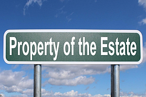 property of the estate