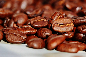 Close up photo of coffee beans