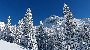 winter snow trees mountain landscape blue sky