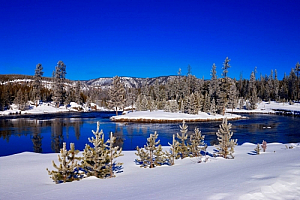 yellowstone national park snow forest mountains river