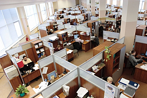 office men women desks computers screens workplace