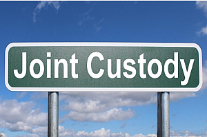 joint custody