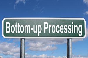 bottom up processing