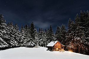 winter night cabin snow fir trees