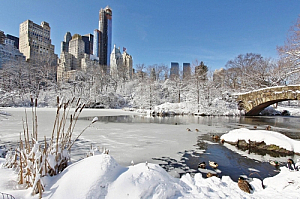 new york city winter snow central park
