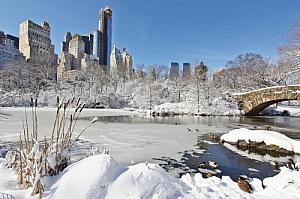 new york city winter snow central park